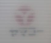 半透明プラダン厚み5.0mm目付1000の透け具合